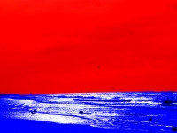 9_blauwe-zeews.jpg